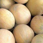 Organic Produce: Cantaloupe